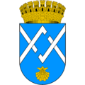 Coat of arms of Salsipuedes.png