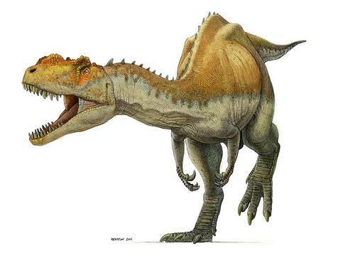 Metriacanthosaurus Name Metriacanthosaurus