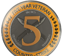 Монета «П'ятирічний ветеран»