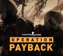 Операція «Розплата»