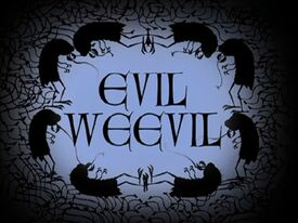 Weevil2