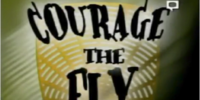 Courage the Fly