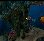 Purple Pufferfish 2