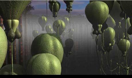 File:Alienplants.jpg