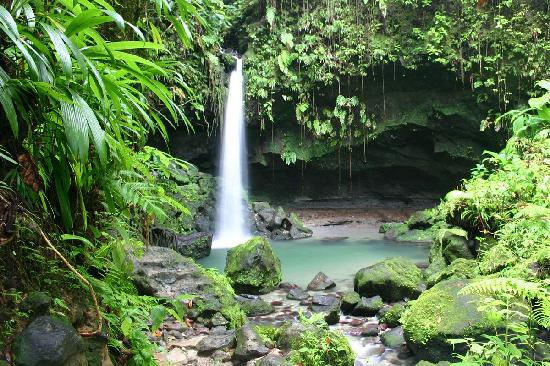 File:The-emerald-pool-dominica.jpg