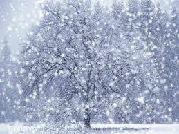 File:Snow Hate.jpg