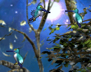 C3hummingbird ingame
