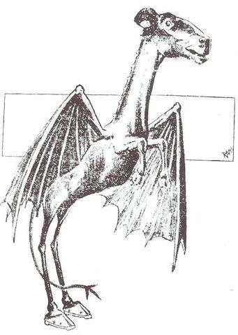 File:Jersey Devil Philadelphia Post 1909.jpg