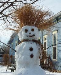 Snowman upland