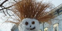 Unexplained Snowman