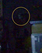 Creepy basement ghost picture 22009a