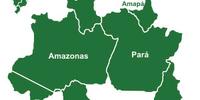 O Fantasma da Amazônia/PT