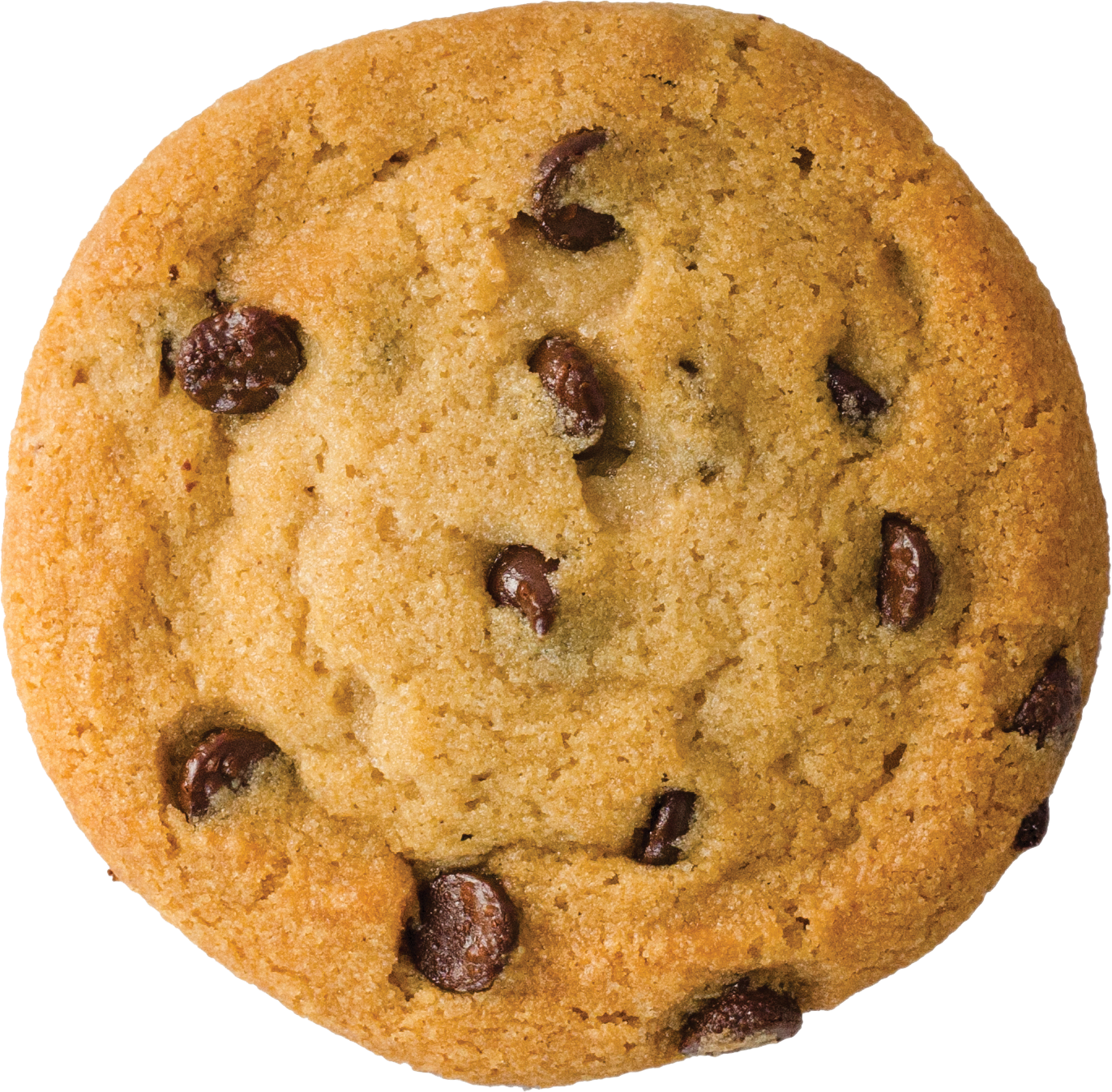 Panel-cookie-choc-cookie.png