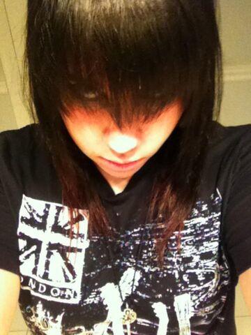 File:Dark brown hair and red tips.jpg