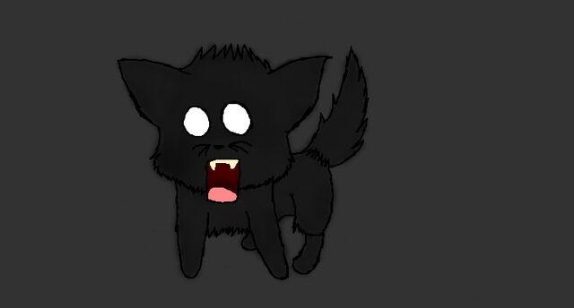 File:Scary cat.jpeg