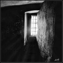 Window-0