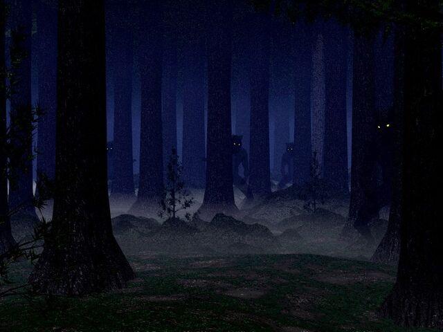 File:Shadow woods.jpg
