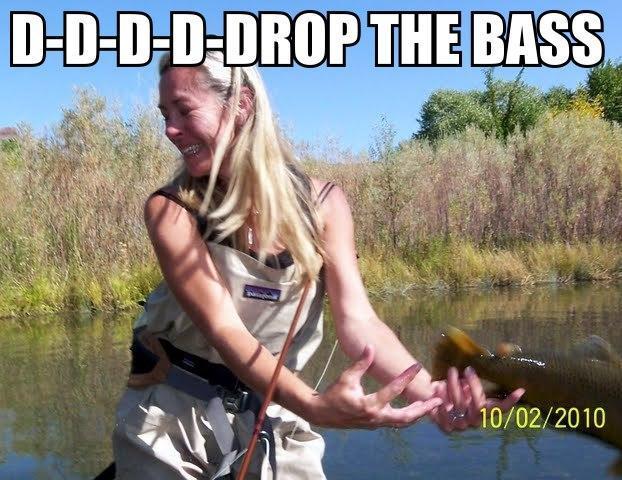 File:D-D-D-D-D-Drop-the-Bass.jpg
