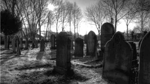 Amongst The Tombstones Creepypasta