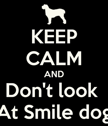 File:Keep-calm-and-don-t-look-at-smile-dog.png