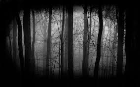 File:Evil forest.png