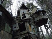 In my Dreams... House in the Woods