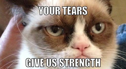 File:015 best-Grumpy-Cat-memes.jpg