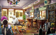 5. Pet Beauty Parlour