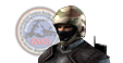 GSG-9 (Alt)