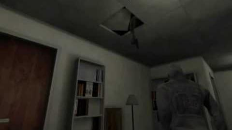 cry of fear how to co op
