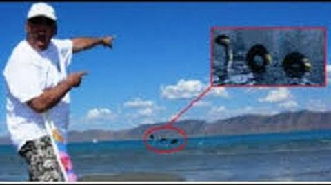 Bear Lake Monster from the List of Cryptids that might be Exist