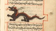 Dragon-islam