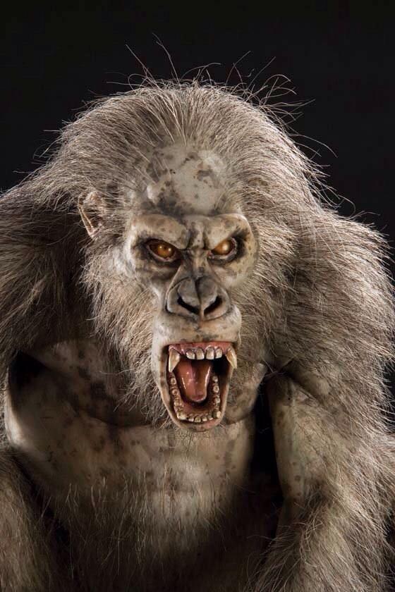 Latest Cb Kong Skull Island American Monster