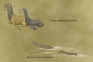 Longnecked sea lion by wsnyder-d99yd7y