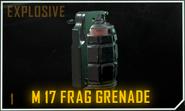 M17 frag loadout icon