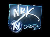 Csgo-col2015-sig nbk foil large