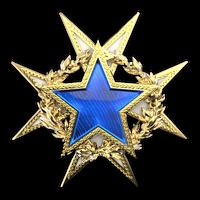 Csgo-service medal 2015 lvl1