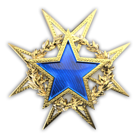File:Csgo-service medal 2015 lvl1.png