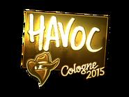 Csgo-col2015-sig havoc gold large