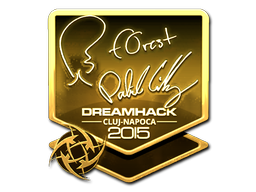 File:Csgo-cluj2015-sig forest gold large.png