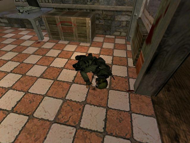 File:SWAT fallen.JPG