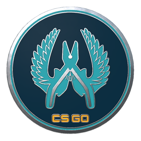 File:Csgo-collectible-pin-guardian.png