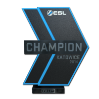 Katowice 2014 champion large