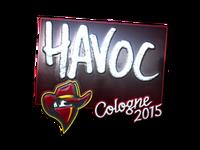 Csgo-col2015-sig havoc foil large