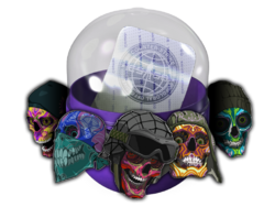 Csgo crate sticker pack sugarface capsule
