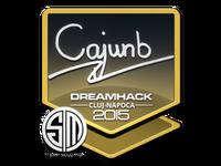 Csgo-cluj2015-sig cajunb large