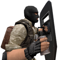 P flashbang shield cz