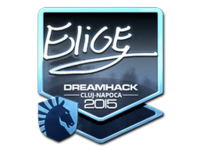Csgo-cluj2015-sig elige foil large