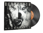 Beartooth 02