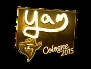 Csgo-col2015-sig yam gold large